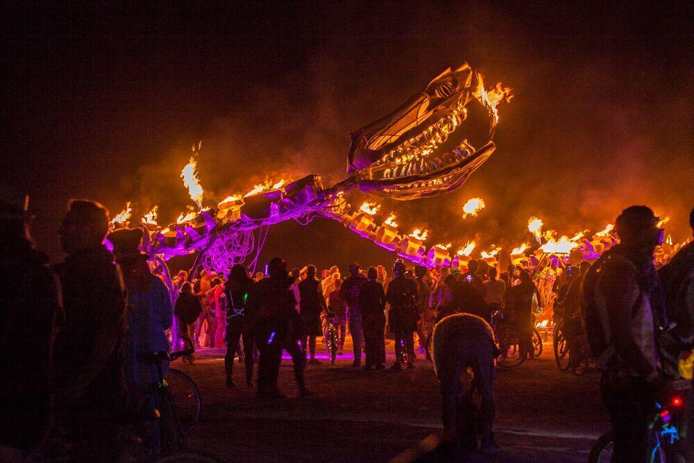20150831_ATB0118_US_NV_BRC_Burning Man_5Dm2